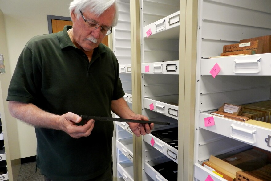 U.S. Fish and Wildlife Forensics Lab Director Ken Goddard holds a wood sample used in the lab's forensic work in Ashland, Ore.