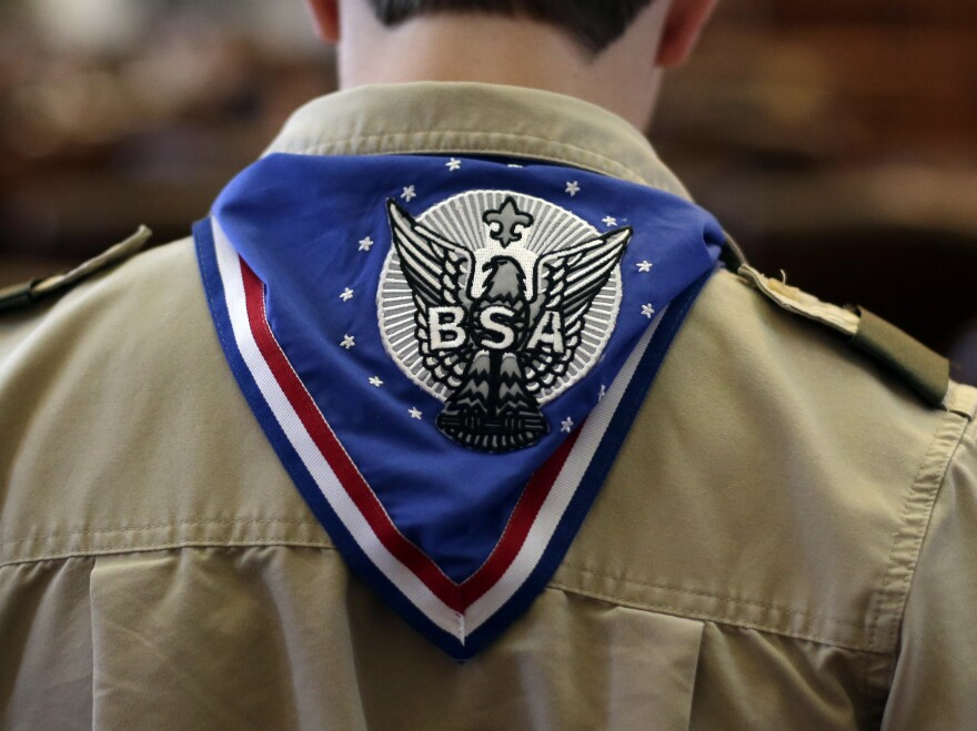 A Boy Scout wears an Eagle Scot neckerchief during the annual Boy Scouts Parade and Report to State in the House Chambers at the Texas State Capitol, February 2013, in Austin, Texas.