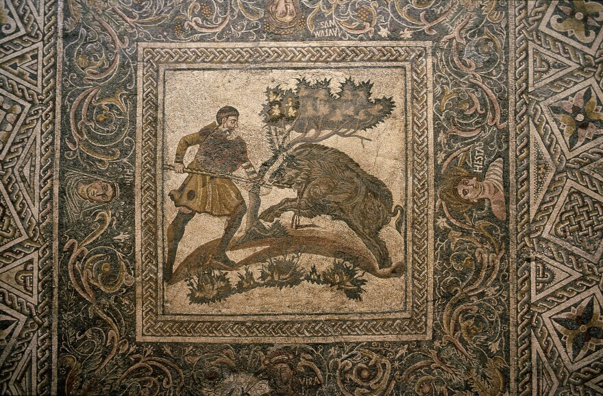 A fourth-century mosaic floor from a Roman villa — now on display at a museum in Merida, Spain — includes depictions of boar hunting.