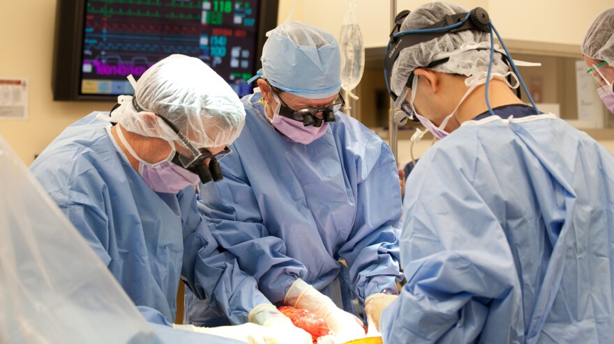 Dr. Majella Doyle (center) performs a transplant recovery at Mid-America Transplant Services' operating room in St. Louis.