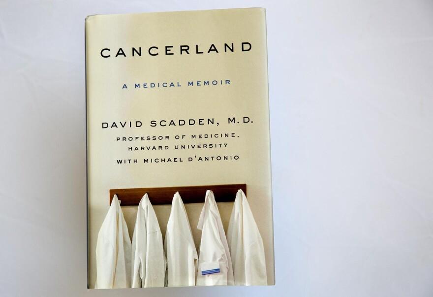"""Cancerland,"" by David Scadden, M.D. (Robin Lubbock/WBUR)"