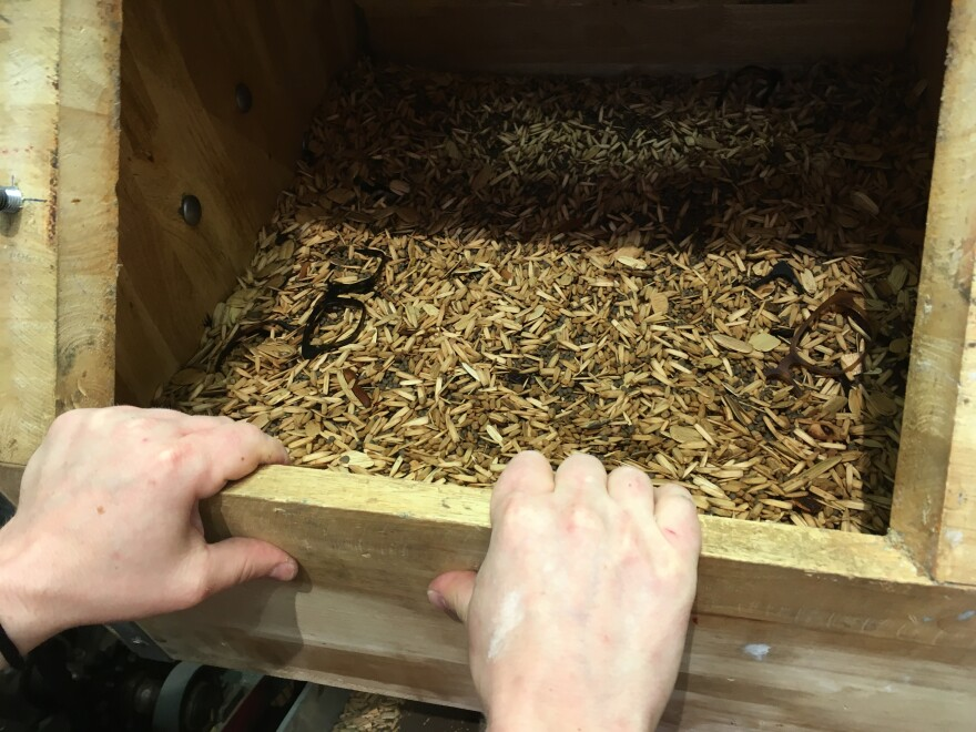 CopperHingewoodchips.jpg