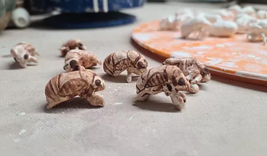 McClanahan's finished cicada shells.
