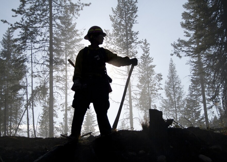 firefighter_wildland_silhouette.jpg