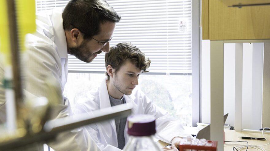 Jason McLellan, associated professor of molecular biosciences, works with graduate student Daniel Wrapp in the McLellan Lab at UT Austin on Monday.