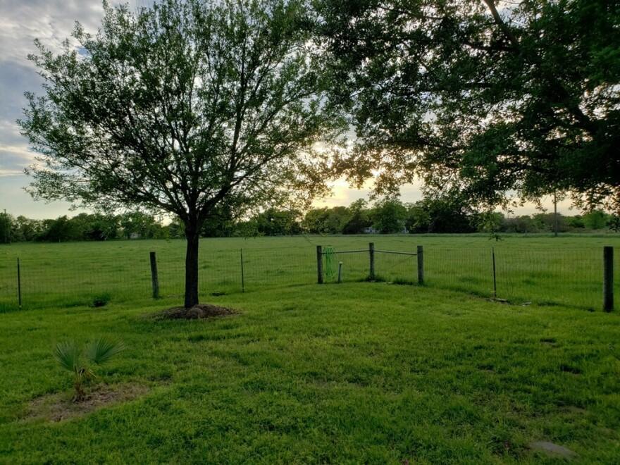 Maria Rodriguez's family property in Calvert, Texas