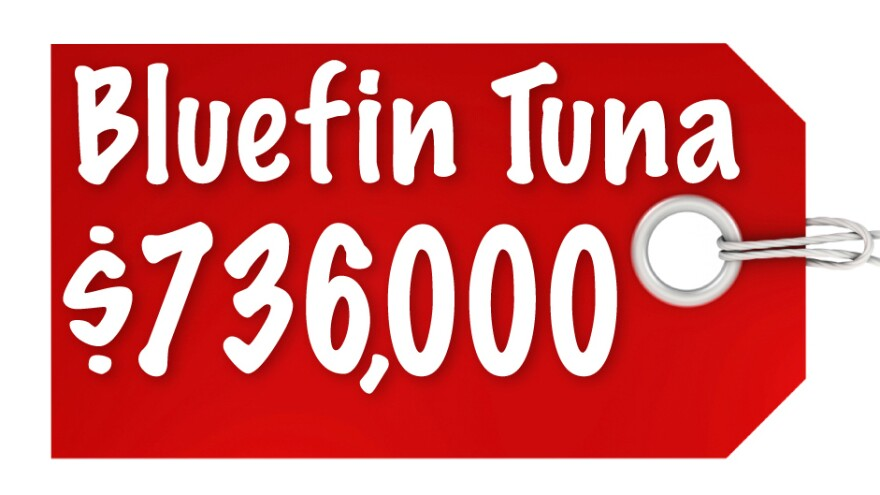 Bluefin Tuna $736,000