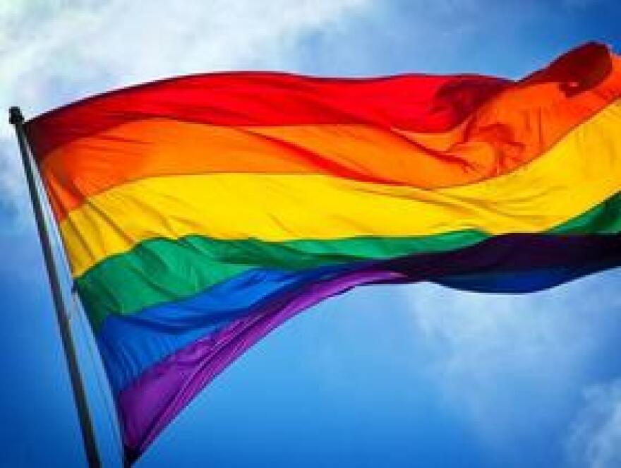 RainbowFlagMGN1020.jpg