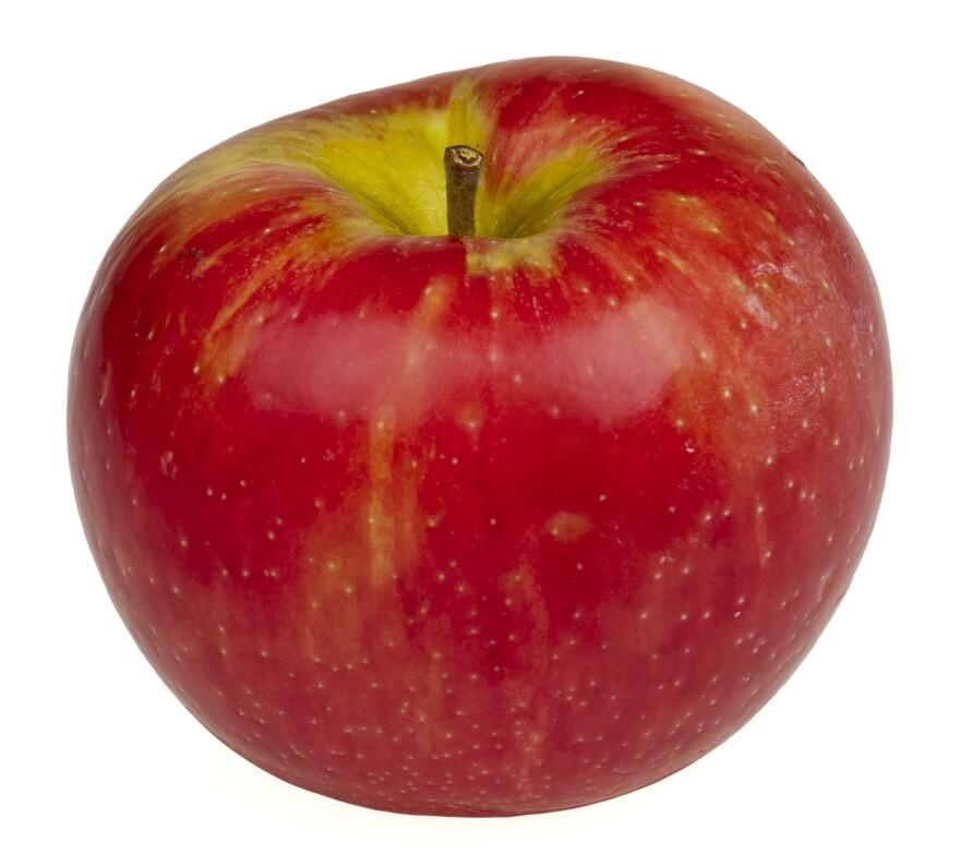 Honeycrisp-Apple.jpg