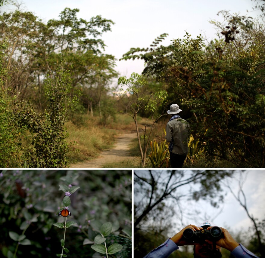 A gardener tends vegetation at the Yamuna Biodiversity Park in northern New Delhi. With 80 species of fruit-yielding plants, a variety of birds and 75 species of butterflies, the park is an attempt to revive the floodplain and flora and fauna that thrived there years ago. Field biologist Mohammad Faisal (bottom right) views one of the wetlands that has been created in the 450-acre project.