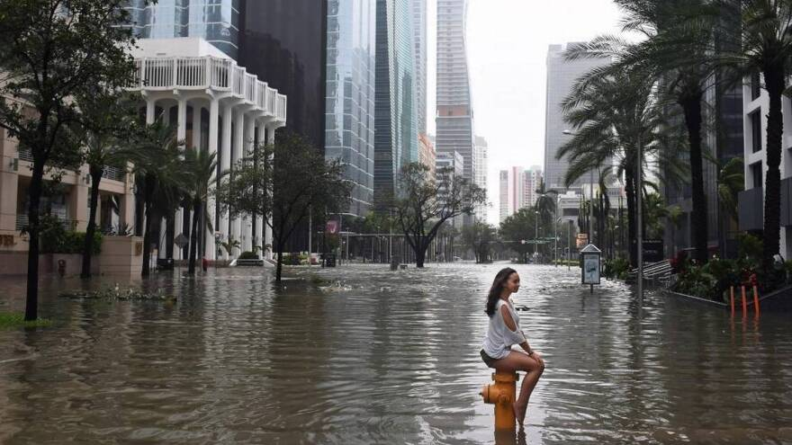 Irma flooding
