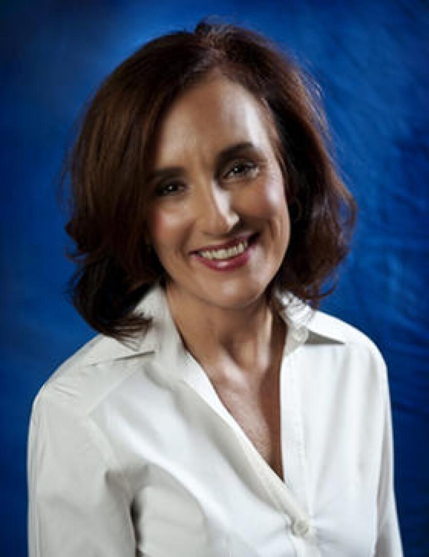 Florida Democratic Party Chairwoman Allison Tant