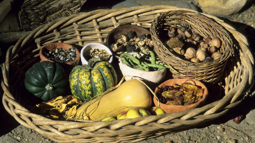Traditional Cherokee foods include nuts, seeds and berries as well as the Three Sisters grown in gardens: squash, beans and corn.