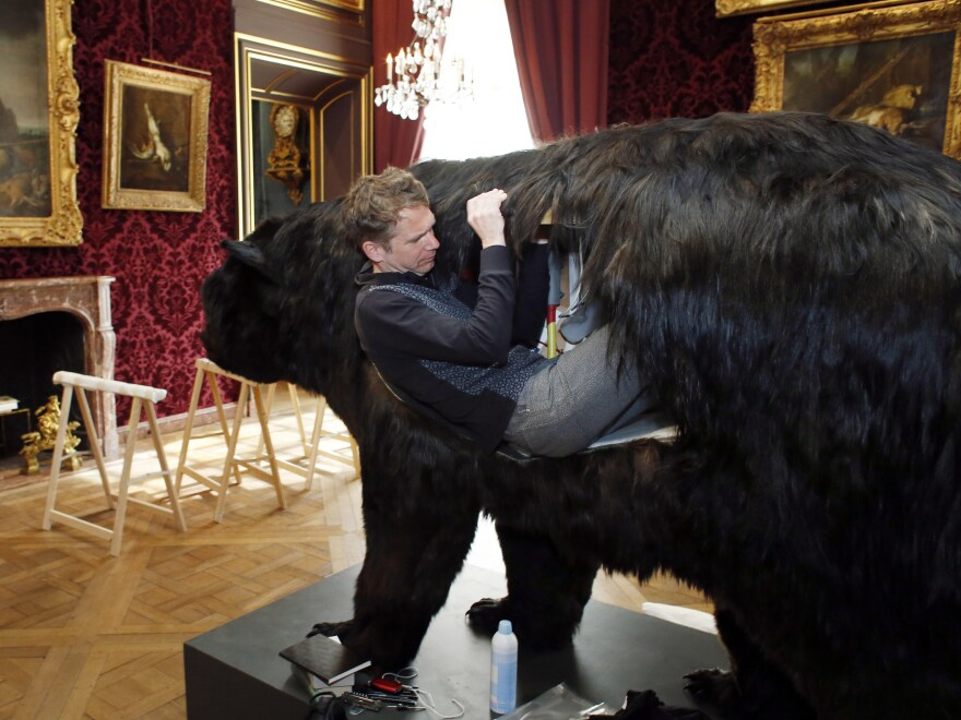 Poincheval enters the bear in March 2014.