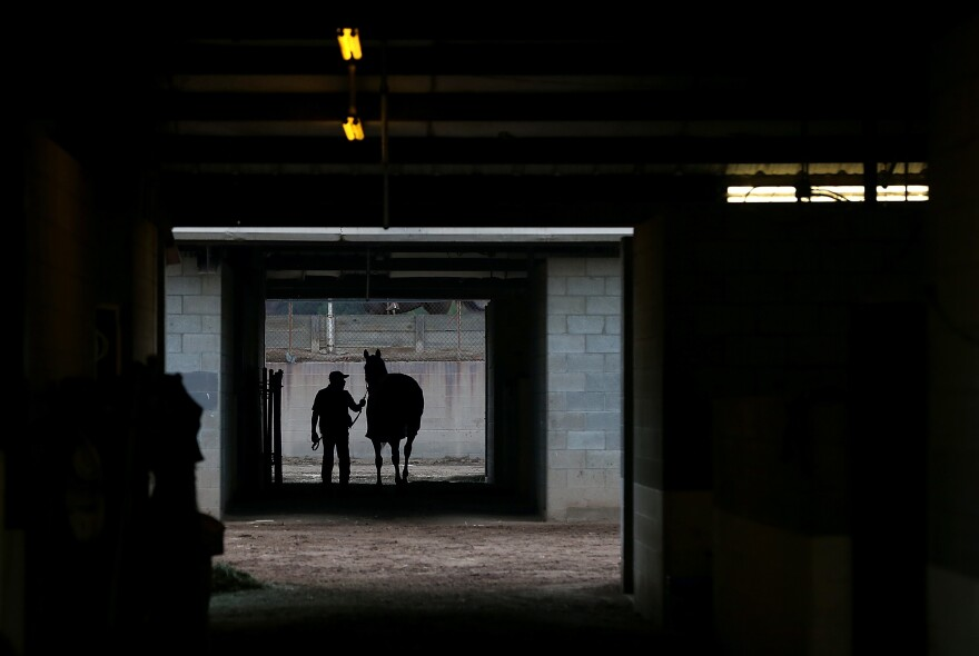 A groom walks a horse in the stables at Hollywood Park in Inglewood, Calif.