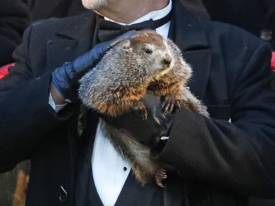 Groundhog Club co-handler John Griffiths holds Punxsutawney Phil, the weather prognosticating groundhog, during the 132nd celebration of Groundhog Day on Gobbler's Knob in Punxsutawney, Pa., Friday, Feb. 2, 2018.