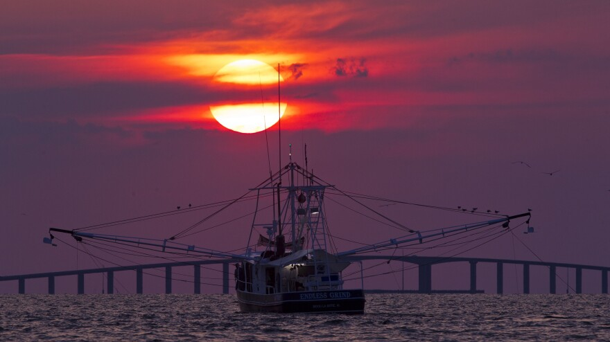 The shrimp boat Endless Grind trawls for shrimp off Dauphin Island, Ala., in May 2012.