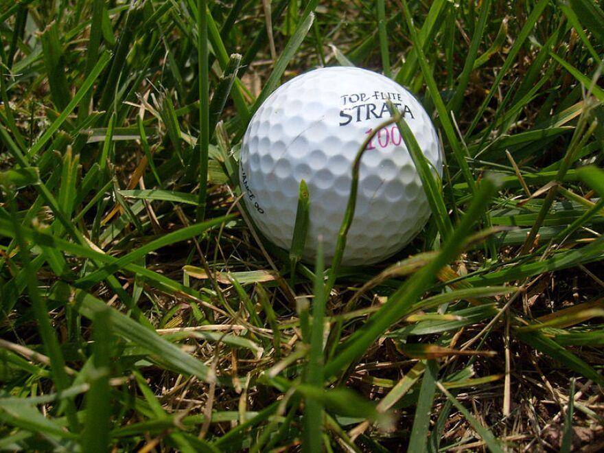 Golf_ball_in_the_grass.jpg