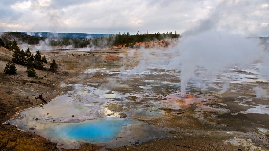 Steam rises from the vents of Porcelain Basin in Yellowstone National Park's Norris Geyser Basin. Steamboat Geyser, which lies in the Norris Geyser Basin, has erupted three times in the past two months.