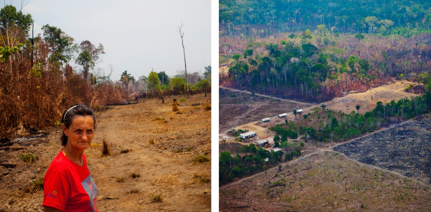 Maria Leonilda Mattara has a small farm on the edge of the forest just outside Porto Vehlo, the capital of the western Brazilian state of Rondonia.