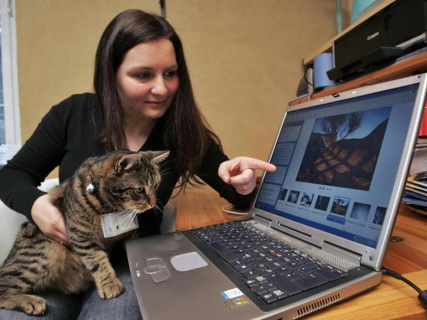 Ramona Markstein and her cat Fritz wearing a mini-camera around his neck sit in front of a laptop where pictures taken by Fritz are displayed on Jan. 21, 2008 in Hartenstein, eastern Germany. Cats have long been popular on the internet.