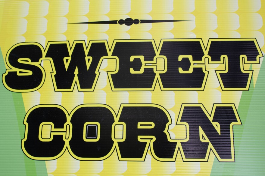 081619-am-SweetCorn-01.jpg