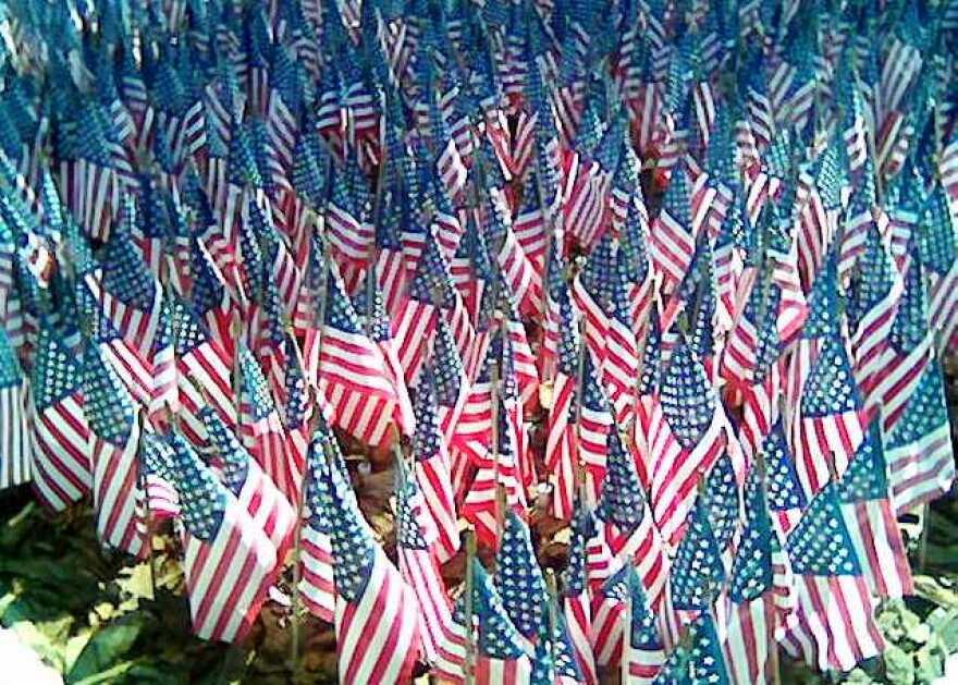 flags-multiple-in-ground.jpg