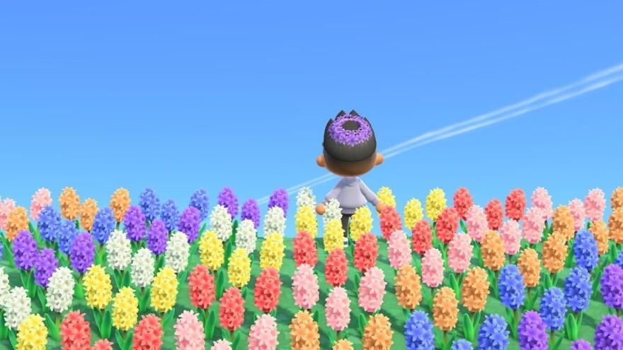 082120_GK_Animal Crossing 4.jpg