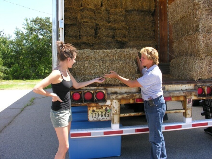 Dedicating hay bales to the emergency food bank for horses.