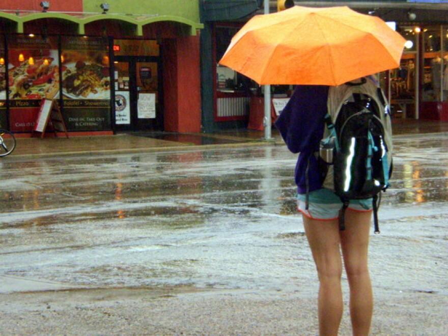 rain,_umbrellas_001.jpg