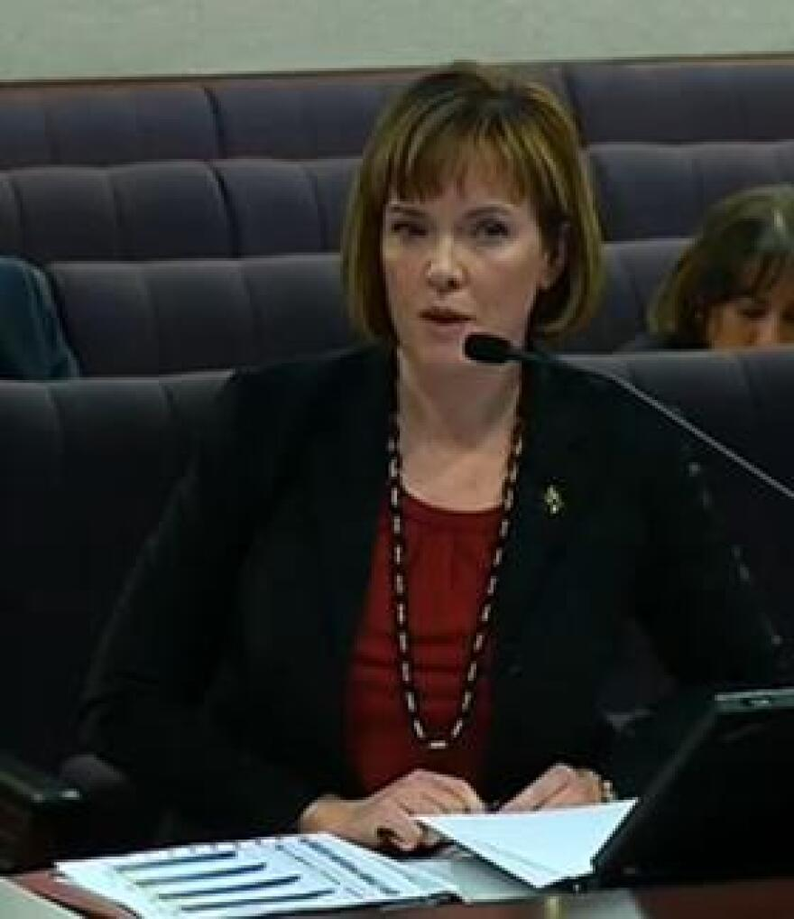 Assistant Florida Department of Law Enforcement Commissioner Jennifer Pritt speaking to lawmakers Wednesday.