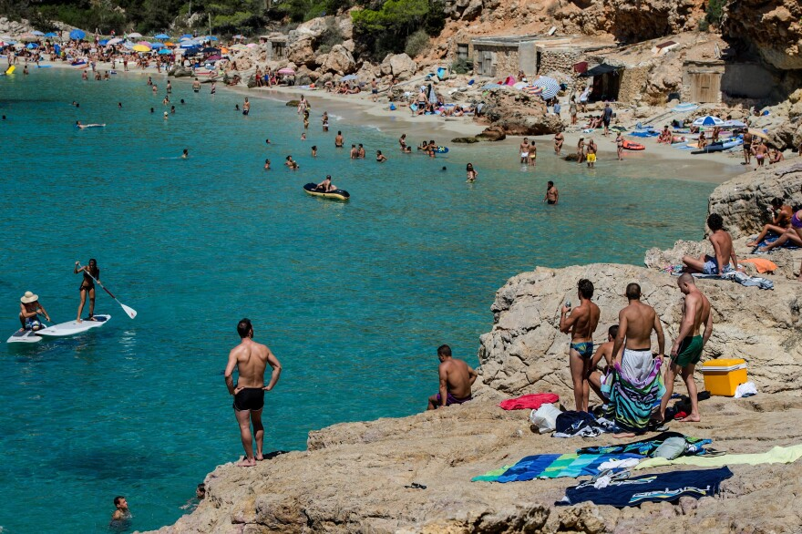 The number of people stung by jellyfish on Mediterranean beaches, like those of the island of Ibiza in Spain, is rising. Along some stretches of Spain's coast, scientists have spotted huge, mile-long blooms of jellyfish, sometimes with 30 to 40 animals per square yard of sea.