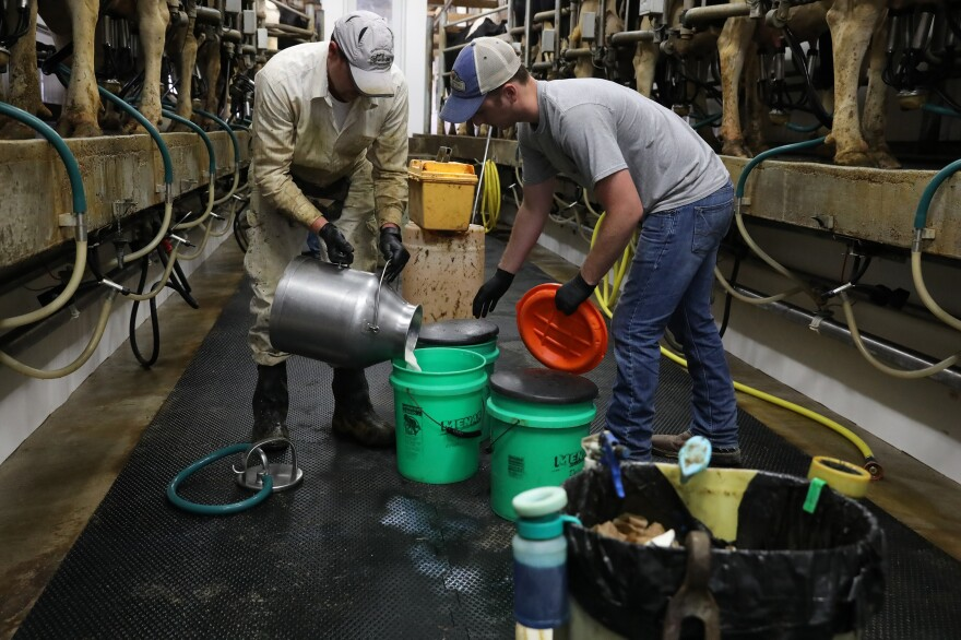 From left, Corey Tavs and Andrew Sullivan help with the afternoon milking at Vision Aire Farms. Owners Travis and Janet Clark often do the milking themselves, but call in additional employees when they need extra help.