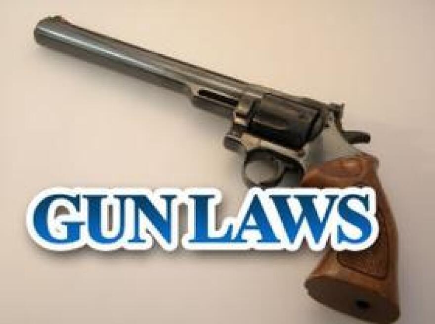 GunLawsMGN0620-2.jpg