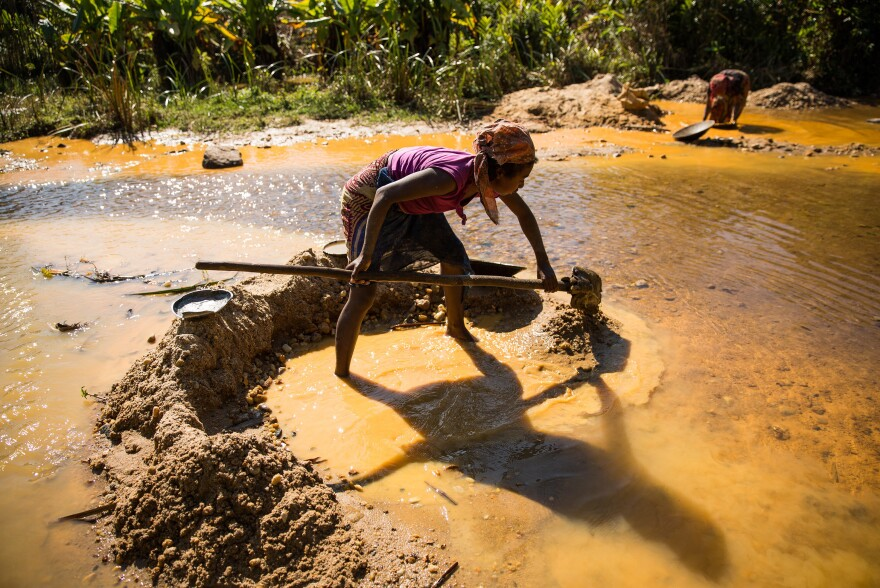 Farmers use what gold they find to support their rice fields, which have been battered by inconsistent weather patterns.