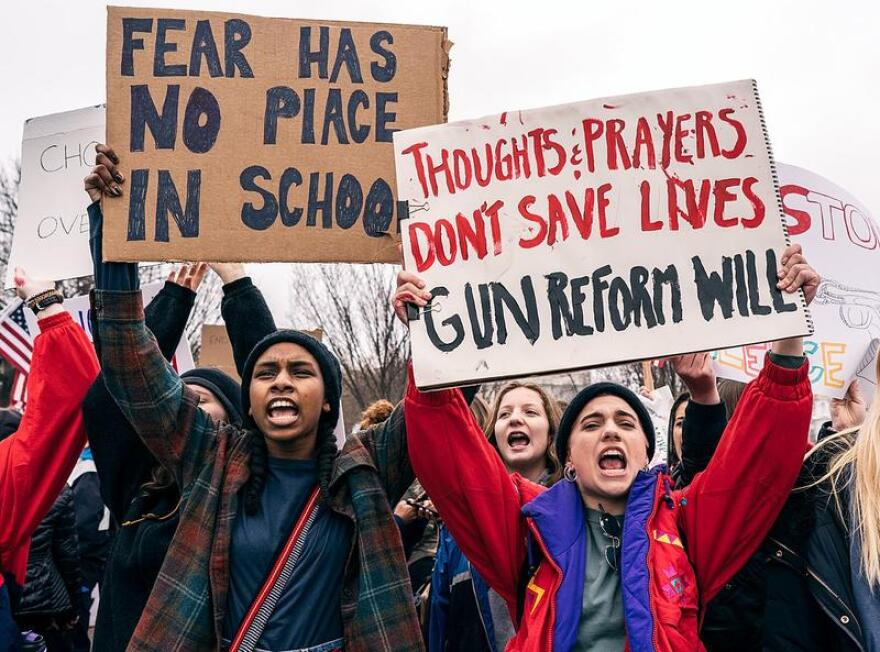 Protesters after the Parkland school shootings