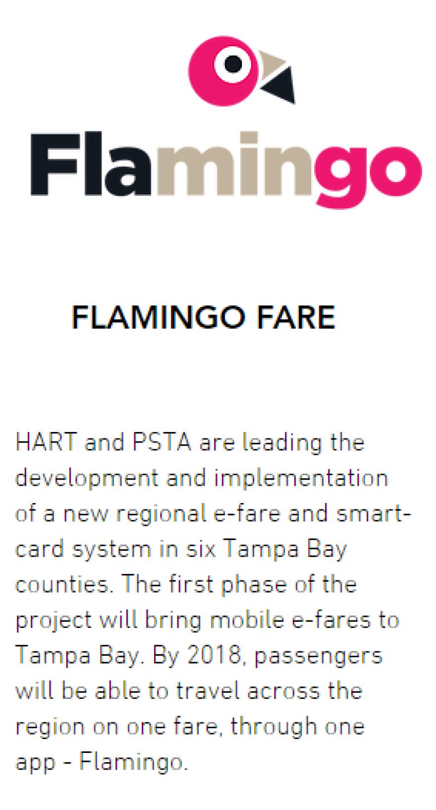 flamingo_fare.png