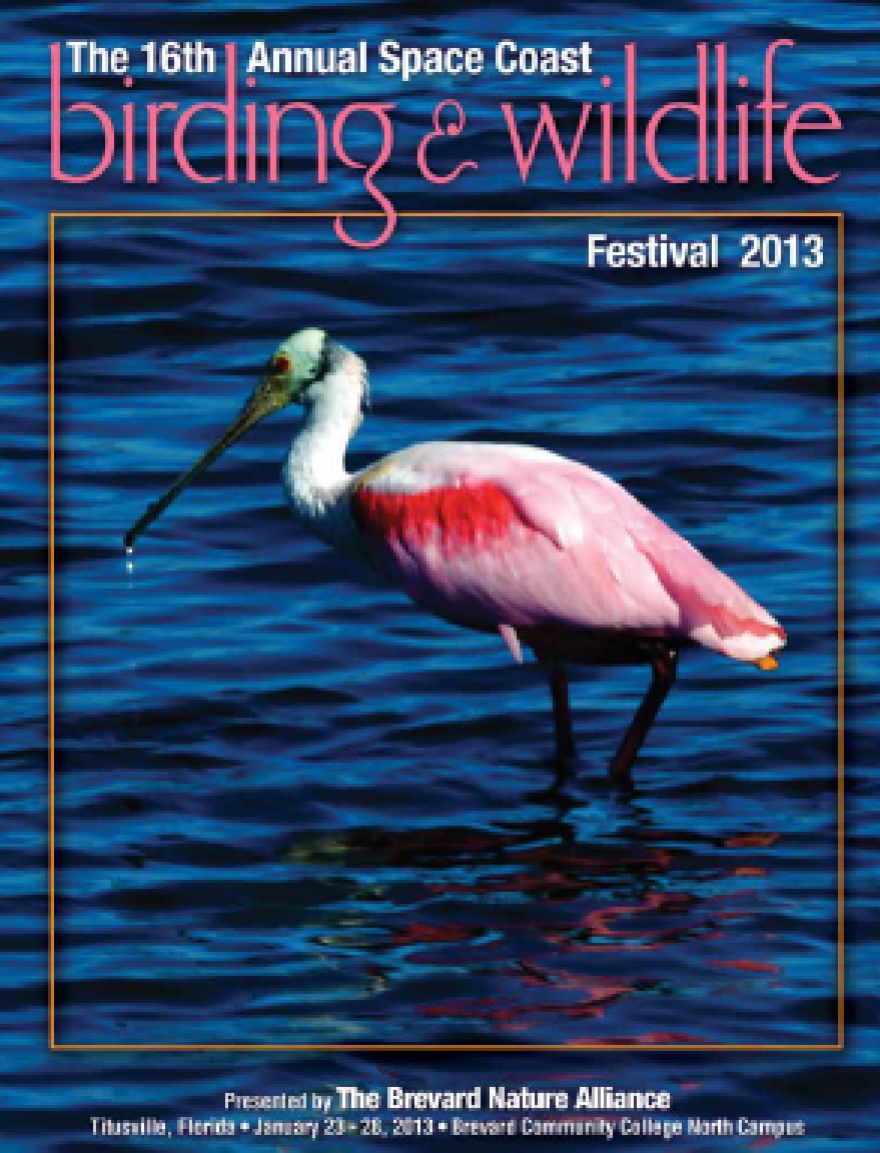 BIRDING COVER.png