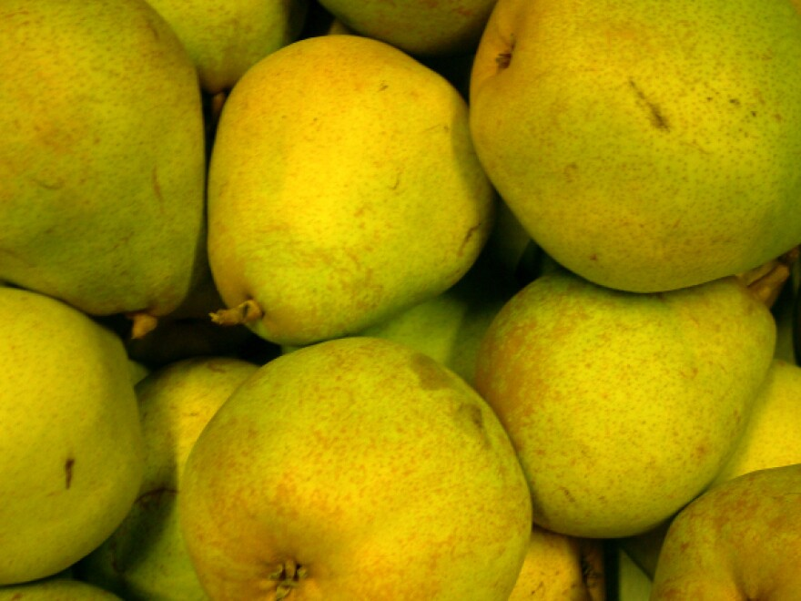 Comice pears are super-yummy, but not approved for schookids.