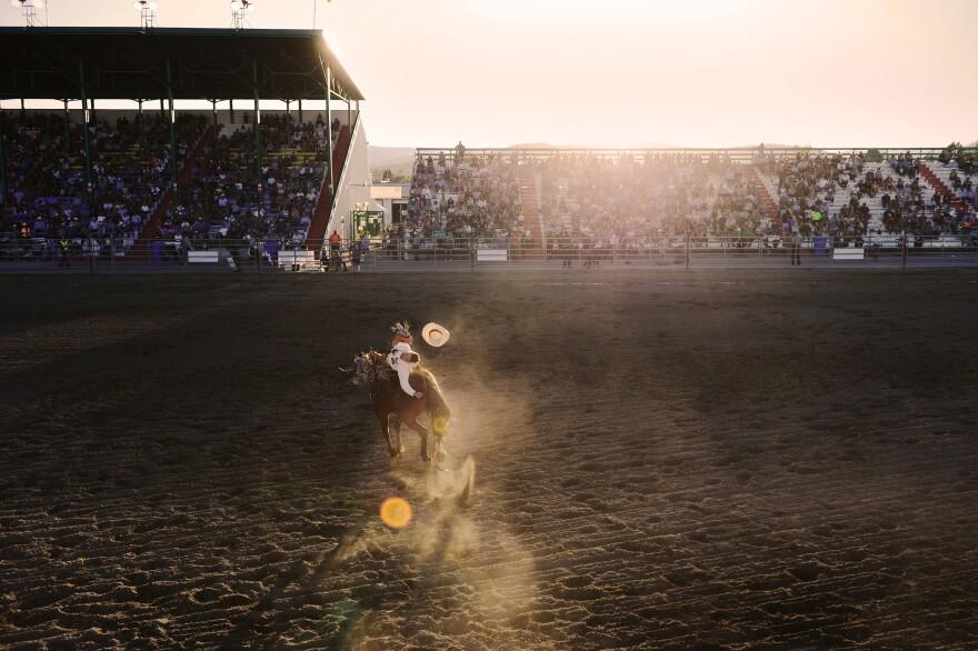 NWMT fair rodeo 5.jpg