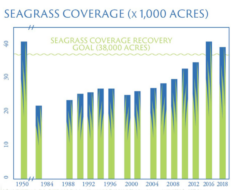 Map of sea grasses since the 1950s