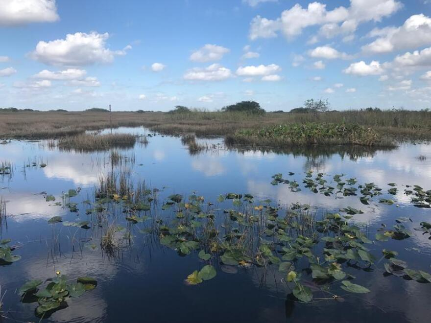 Supporters say Florida's Everglades would benefit from increased freshwater flow with the construction of a reservoir south of Lake Okeechobee.