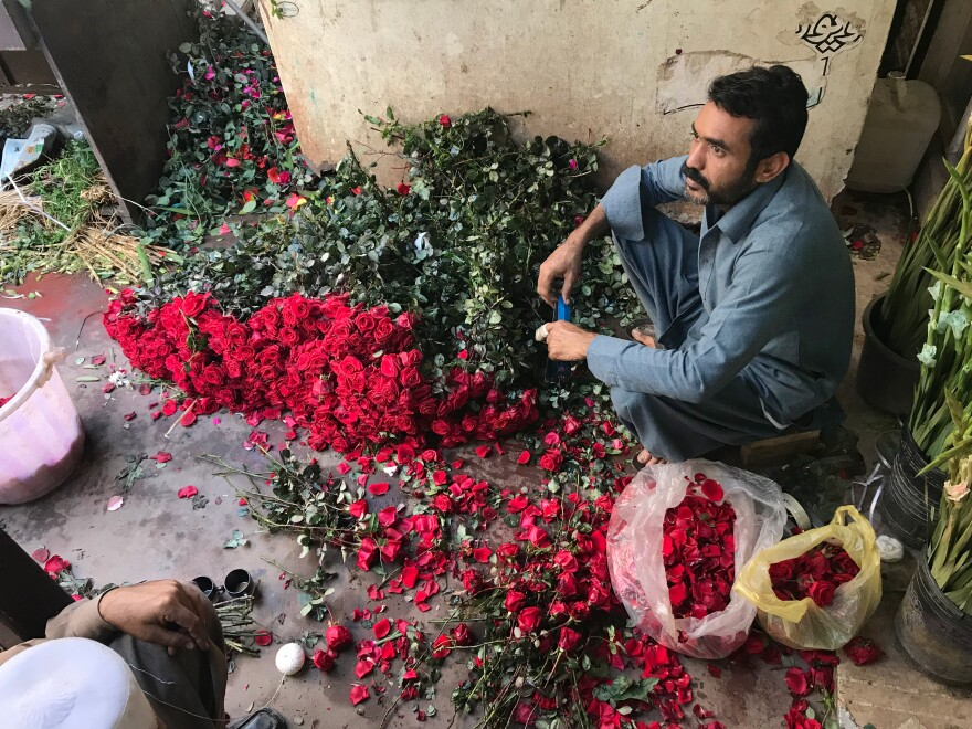 At flower stalls near a bridge in Karachi, workers stripped thorns off roses, arranging them into bouquets for Valentine's Day.