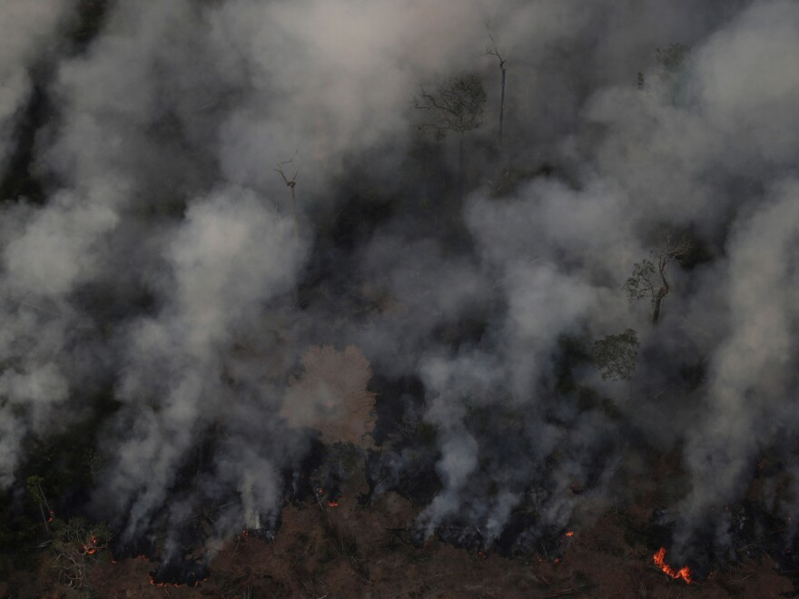 Smoke billows from a fire in an area of the Amazon rainforest near Porto Velho, Brazil, earlier this week.