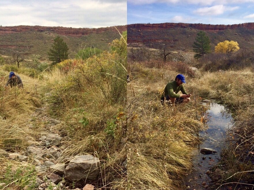 In the fall of 2017, left, Stream Tracker volunteer John Hammond found this creek near Fort Collins, Colo., to be dry. A year later, it was flowing again.