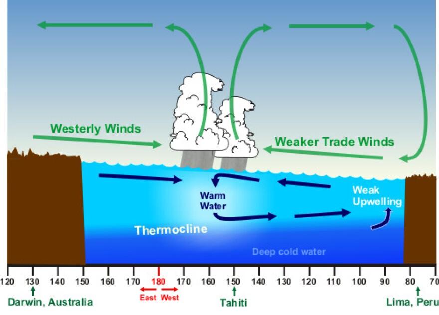 A diagram of El Niño Conditions in the Pacific Ocean.