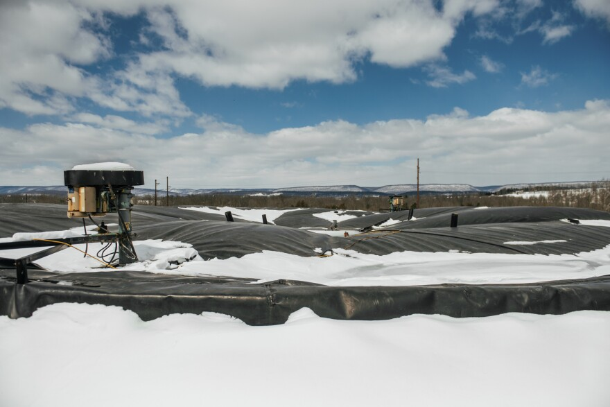 """The methane digester on Reinford Farms is like """"a big, giant stomach,"""" says Brett Reinford. It converts manure and excess produce from local food stores into renewable energy."""