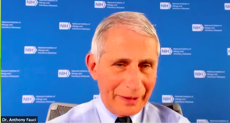 Dr. Anthony Fauci, director of the National Institute of Allergy and Infectious Diseases, speaks Zoom call on Thursday, Sept. 24.