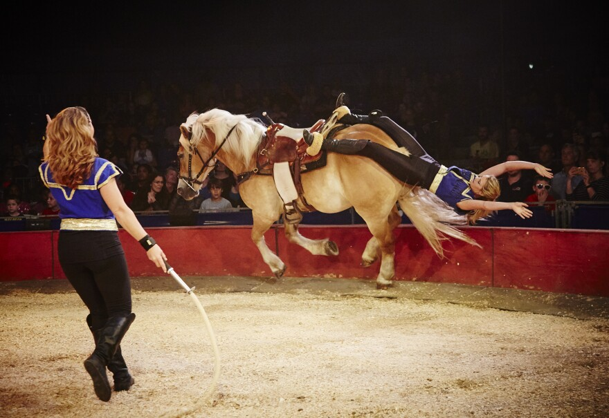 The Alanian Riders will be another highlight of Circus Flora shows this year.