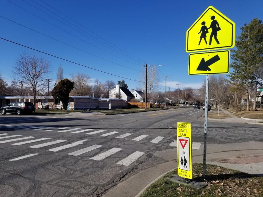 A photo of a school crosswalk.